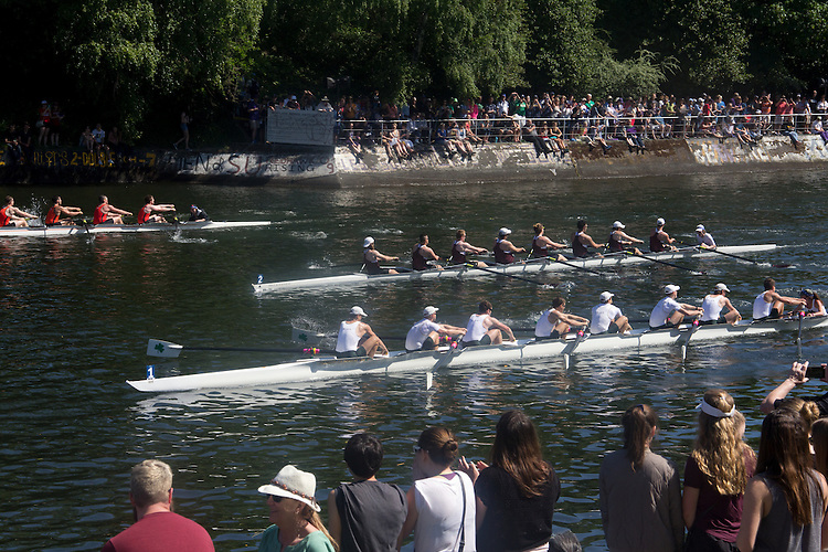 Rowing, Windermere Cup, Opening Day Regatta, Seattle, Washington State, May 7 2016, Lake Washington Ship Canal, Montlake Cut, 30th Annual Windermere Cup,