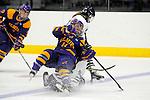 2013 W DIII Ice Hockey