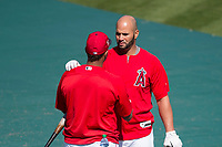 Los Angeles Angels first baseman Albert Pujols (5) talks with a teammate during Spring Training Camp on February 22, 2018 at Tempe Diablo Stadium in Tempe, Arizona. (Zachary Lucy/Four Seam Images)