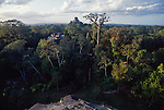 Tikal, Guatemala, Mayan temple, jungle, sunrise, World Heritage Site; Central America,