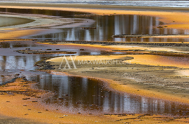 Patterns form in the runoff from Grand Prismatic Spring.
