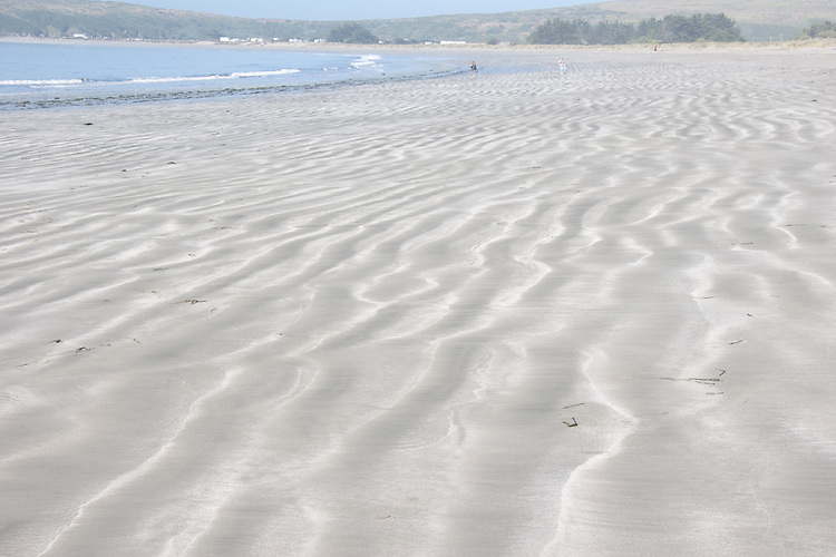 The beach on the south side of Bodega Bay has interesting tidal patterns