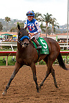 DEL MAR, CA  AUGUST 31: #5 Bast, ridden by Drayden Van Dyke, returns to the connections after winning the Del Mar Debutante (Grade l) on August 31, 2019 at Del Mar Thoroughbred Club in Del Mar, CA. ( Photo by Casey Phillips/Eclipse Sportswire/CSM)