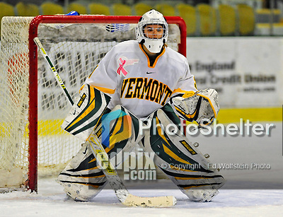 8 February 2009: University of Vermont Catamounts' goaltender Caitlin Whitlock, a Freshman from Westfield, NJ, in action against the University of New Hampshire Wildcats in the second game of a weekend series at Gutterson Fieldhouse in Burlington, Vermont. The Wildcats defeated the lady Catamounts 6-2 to sweep the 2-game series. Mandatory Photo Credit: Ed Wolfstein Photo