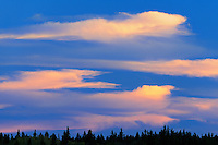 CLouds at sunset<br /> Cypress Hills Provincial Park<br /> Saskatchewan<br /> Canada