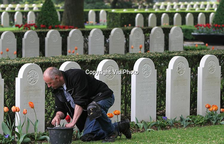Foto: VidiPhoto..RHENEN - Het gaat er om spannen op het ereveld De Grebbeberg in Rhenen. Op de militaire begraafplaats, waar 840 Nederlandse militaire oorlogsslachtoffers liggen, bloeien de 10.000 tulpen door het warme voorjaar te vroeg. Om te voorkomen dat ze er tijdens dodenherdenking 4 mei verlept bijhangen, probeert beheerder van het ereveld Charles Willemsen, er alles aan te doen om de bloemen mooi te houden. Vrijdag haalt hij uitgebloeide bloemen weg tussen de graven.