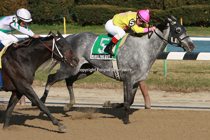 """Marilyn's Guy, with Chuck """"C. C."""" Lopez aboard, win the Grade III Excelsior Stakes, for 3-year olds & up, 1 1/8 mile, on the inner dirt at Aqueduct.  Trainer Anthony Dutrow.  Owners Michael Dubb, Bethlehem Stables LLC and Gary Aisquith."""