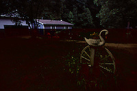 Swans and wagon wheels line the drive of a rural home.