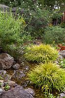Judy Adler Garden, Walnut Creek, California