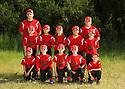 2014 Chico Baseball (Team 6)