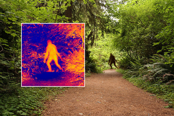 Bigfoot, thermal image inset