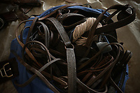 BOGOTÁ -COLOMBIA. 13-10-2018: Aperos para los caballos son vistos durante el 22 encuentro Mundial de Coleo en Villavicencio, Colombia realizado entre el 11 y el 15 de octubre de 2018. / Tools for horse horses during the 22 version of the World  Meeting of Coleo that takes place in Villavicencio, Colombia between 11 to 15 of October, 2018. Photo: VizzorImage / Gabriel Aponte / Staff