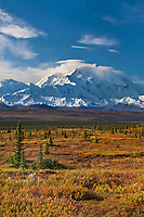 Autumn tundra and the summit of Denali, Denali National Park, Alaska.