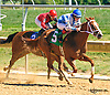 She's Going Strong winning at Delaware Park on 9/12/16