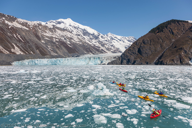 Kayakers in floating icebergs from Cascade, Barry and Coxe glaciers in Barry Arm, northern Prince William Sound, southcentral, Alaska.