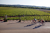 USA, California, Healdsburg, a group of cyclists on Dry Creek road near Sonoma County
