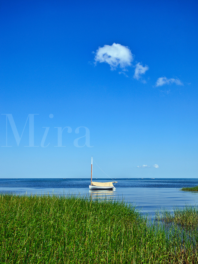 Lone boat, Brewster, Cape Cod, MA, Massachusetts