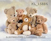 Interlitho, Alberto, CUTE ANIMALS, teddies, photos, 6 teddies(KL15886,#AC#)