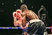 30th September 2017, Echo Arena, Liverpool, England; Matchroom Boxing, Eliminator for WBA Bantamweight World Championship; WBA International Super-Lightweight Championship tom farrell versus ohara davies; Ohara Davies lands a KO right hook on Tom Farrell and he's on the canvas and the referee stops the fight
