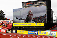 Photo: Richard Lane/Richard Lane Photography..Aviva British Grand Prix. 31/08/2009. Giant screen.