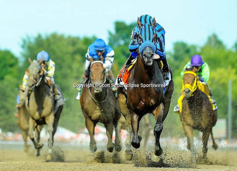 August 29, 2015 : Private Zone, ridden by Martin Pedroza, wins the Forego Stakes on Travers Stakes Day in Saratoga Springs, NY. Scott Serio/ESW/CSM