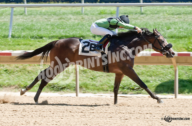 Gunfighter winning at Delaware Park on 9/4/13