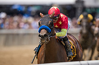 ELMONT, NY - JUNE 09: Abel Tasman #6, ridden by Mike Smith, wins the Ogden Phipps Stakes on Belmont Stakes Day at Belmont Park on June 9, 2018 in Elmont, New York. (Photo by Alex Evers/Eclipse Sportswire/Getty Images)