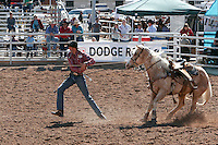 The annual Silver Spur Rodeo held at the Yuma County Fairgrounds, 2009, Yuma Arizona.