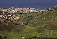 Europe/France/Languedoc-Roussillon/66/Pyrénées-Orientales/Collioure: vue générale depuis le balcon de la tour Madeloc - Vue sur le vignoble et le village