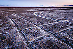 Tracks in the mud on the playa of Sevier Lake, Utah