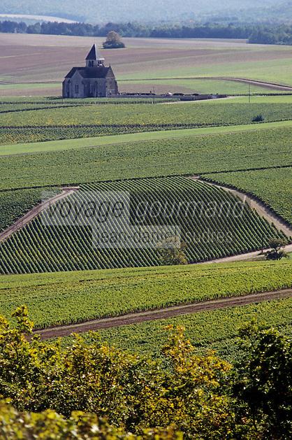 Europe/France/89/Yonne/AOC Chablis: l'église de Préhy au milieu du vignoble de Chablis