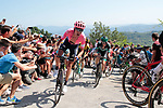 Hugh Carthy (GBR) EF Education First summits the fearsome Cat2 Murgil climb on the 1st ascent during the 2019 Clasica Ciclista San Sebastian, running 227.3km starting and finishing in Donostia-San Sebastián, Spain. 3rd August 2019.<br /> Picture: Colin Flockton | Cyclefile<br /> All photos usage must carry mandatory copyright credit (© Cyclefile | Colin Flockton)
