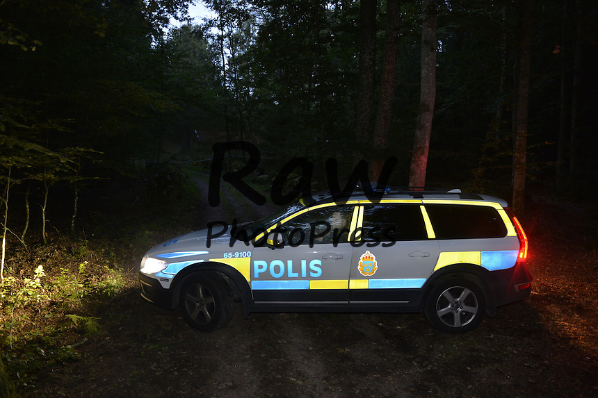 Sweden sex in car