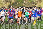 The runners at the start of the junior boys race at the Kerry Colleges Cross Country chamipionships in Killarney on Friday