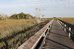 Boardwalk through sawgrass, Everglades National Park, Florida