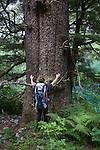 Sitka Spruce, Baranof Island, Alaska