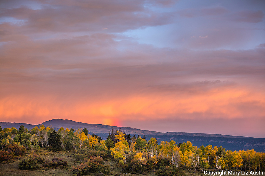 Uncompahgre National Forest, CO: Colorful clouds and rainbow on the horizon at sunrise with hillside of fall aspens
