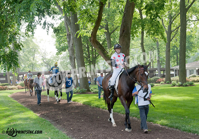 Onepointhreekarats before The Winter Melody Stakes at Delaware Park on 5/22/13