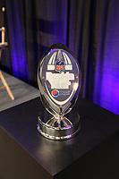 Pepsi Rookie of the year Troph&auml;e von Percy Harvin (WR Vikings)<br /> Rookie-of-the-year, Super Bowl XLIV Pressekonferenzen *** Local Caption *** Foto ist honorarpflichtig! zzgl. gesetzl. MwSt. Auf Anfrage in hoeherer Qualitaet/Aufloesung. Belegexemplar an: Marc Schueler, Alte Weinstrasse 1, 61352 Bad Homburg, Tel. +49 (0) 151 11 65 49 88, www.gameday-mediaservices.de. Email: marc.schueler@gameday-mediaservices.de, Bankverbindung: Volksbank Bergstrasse, Kto.: 52137306, BLZ: 50890000