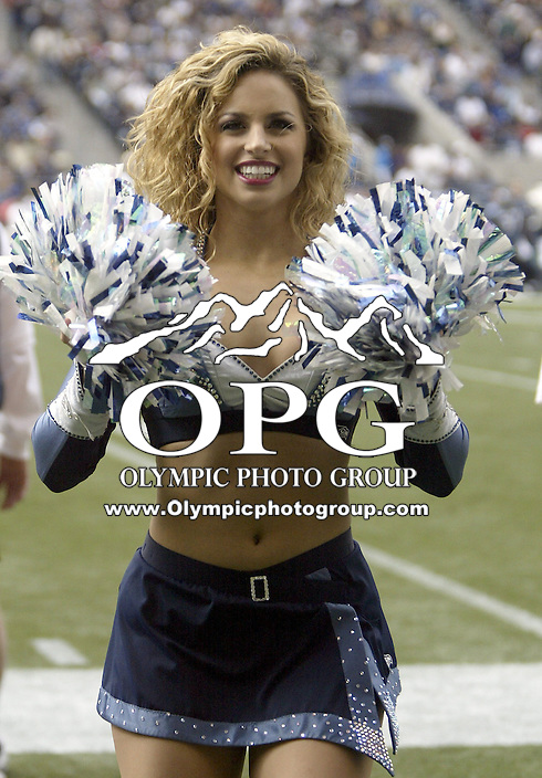 Seattle Seahawks Sea Gal cheerleaders entertained the crowd during the San Francisco 49ers game at Quest Field in Seattle, WA.