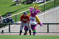 Great Lakes Loons guest Reggy the Purple Party Dude toys with an associate disguised as the first base coach during a game against the Fort Wayne TinCaps on August 18, 2013 at Dow Diamond in Midland, Michigan.  Fort Wayne defeated Great Lakes 4-3.  (Mike Janes/Four Seam Images)