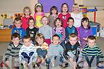GOOD STUDENTS: The newest students of Castlegregory NS having fun on Friday front l-r: Muiris O? Connaill, Thomas O? Domhnaill, Alain Beaujoim, Conchu?ir O? Laoghaire, Adam O? Conchu?ir and Cian O? Cro?ini?n. Seated l-r: Colm O? Spealla?in, Cosette Ni? Dhubhlainn, Zoe Ni? Mhuicheartaigh, Ro?isi?n Ni? Mhaoiliath, Sea?n O? Conchu?ir and Andrea Ni? Dhubhlainn. Back l-r: Freya Cheevers, Niamh Ni? Dhuaga?in Nic Seoin, Sadhbh Ni? Mhaoiliath, Annie Ni? Ne?ill and Ciara de Buitle?ir..   Copyright Kerry's Eye 2008