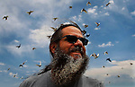 Pigeon fancier Lee Roith smiles as his pigeons fly overhead at his residence north of Cheyenne last week. Roith has around 200 birds and has started a business releasing the birds at special events.