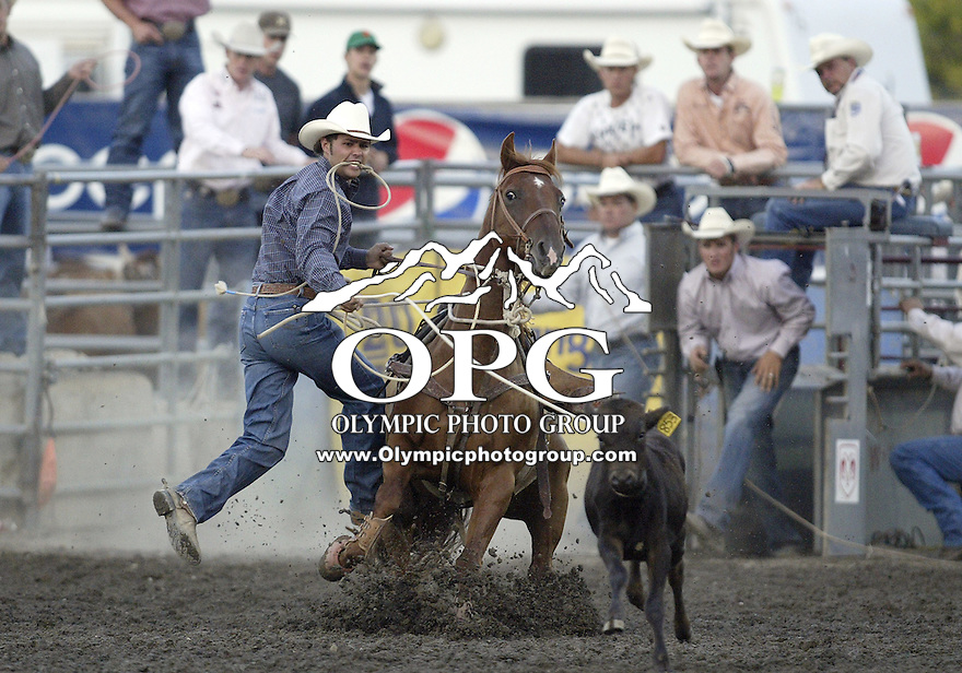 27 Aug 2009:   Monty Lewis scored a time of 7.9 in the Tie Down Roping competition at the Kitsap County Thunderbird PRCA Pro Rodeo in Bremerton, Washington.