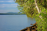 View of Rangeley Lake from the campground at Rangeley Lakes State Park, Maine, USA