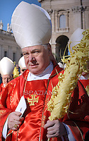Cardinal Gerhard Ludwig Muller.Pope Francis during of the Palm Sunday celebration on St Peter's square at the Vatican.. March 29, 2015