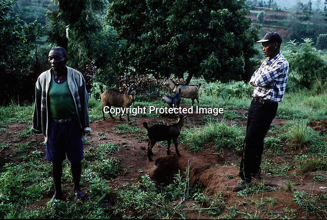 KARAMA, RWANDA - FEBRUARY 19: Deo Kayitana, 50, (R) a genocide survivor, meets for the first time with Joseph Rwandekwe, who he accuses of killing his wife, children and stealing his cows during the genocide of 1994 February 19, 2003 in Karama, Rwanda. Mr. Rwandekwe was recently released from prison as the government freed old, sick and underage genocide suspects. Mr. Kayitana visited him to talk about the horrible things that happened in 1994, and to reconcile with the accused murderer of his family. 800,000 mainly Tutsis and moderate Hutus were killed in about one hundred days in Rwanda in 1994. About 100,000 prisoners accused of the genocide are still in prisons nine years later awaiting trials. Rwanda is currently trying to cope with these problems of crime, punishment and reconciliation through village trials called Gacacas. Gacaca, which means on the grass, is a traditional way of solving disputes between local communities and involve juries of residents. 11,000 gacacas are currently trying to resolve crimes from the genocide. (Photo by Per-Anders Pettersson)