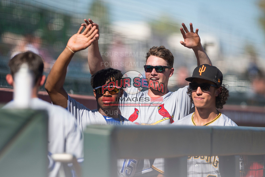 Khalil Lee (15), Lane Thomas (23), and Cole Tucker (2), of the Surprise Saguaros, congratulate Cavan Biggio (26), of the Toronto Blue Jays organization, after his first home run of the season during an Arizona Fall League game against the Scottsdale Scorpions at Scottsdale Stadium on October 26, 2018 in Scottsdale, Arizona. Surprise defeated Scottsdale 3-1. (Zachary Lucy/Four Seam Images)