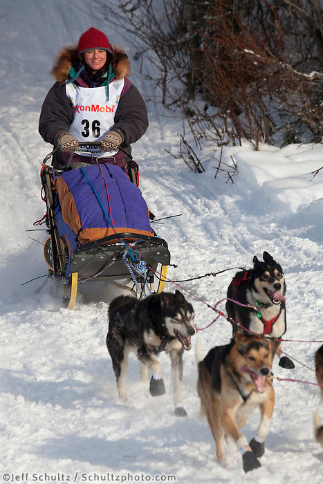 2010 Iditarod Re-start in Willow Alaska musher # 36 MICHELLE PHILLIPS