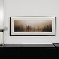 """D'Amore: """"Bordeaux Reeds"""", Digital Print, Image Dims. 14.25"""" x 45"""", Framed Dims. 22.5"""" x 53.5"""""""